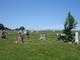 Bainbridge Grove Cemetery