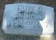Profile photo:  Olive Mae <I>Jobes</I> Anthony
