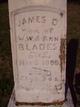 Profile photo:  James D. Blades
