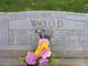 Profile photo:  Abi E Wood