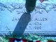 James Willie Allen