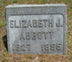 Profile photo:  Elizabeth J Abbott