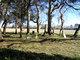 Scarborough Graveyard