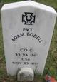 Profile photo:  Adam Bodell