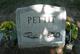 Selma Elisabeth <I>Menzel</I> Pettit