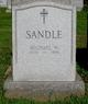 Michael Sandle
