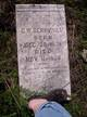 George W. Berryhill