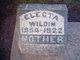 Electa Wildin
