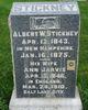 Albert William Stickney