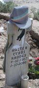 Walter Cyrus Rhodes