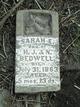 Sarah E Bedwell