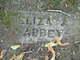 Profile photo:  Eliza Ann <I>Nugent</I> Abbey