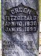 Green Fitzgerald