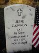 Jesse Cannon