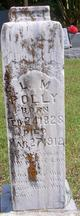 "Profile photo:  Lydia Margaret ""Liddy"" <I>Rose</I> Polly"