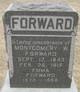Dr Montgomery W Forward