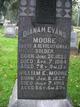 Dianah <I>Evans</I> Moore