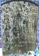 Bula Cline