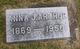 Anna J Arthur