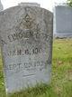 Profile photo:  A Lincoln Loper