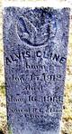 Alvis Cline