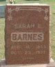 Sarah E Barnes
