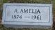 Profile photo:  A Amelia Rosenbaum