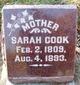 Sarah <I>Jones</I> Cook