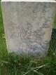 William Harrison Tippets