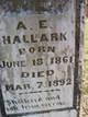 Profile photo:  A E Hallmark