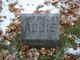 Profile photo:  Addie Fitch