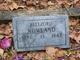 Bellzora <I>Williamson</I> Nowland