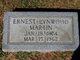 Ernest Lynwood Martin