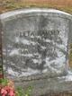 Fleta Inez <I>Ramsey</I> Abernethy