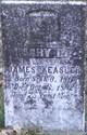 Mary D. <I>Gregg</I> Keasler