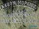 Anson Hopkins