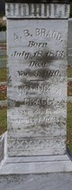 Virginia A. <I>Wilson</I> Bragg