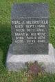 Mary Ann <I>Palmer</I> Merryfield