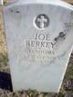 """Earnest Arnold Joseph """"Joe"""" Berkey"""