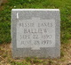 Bessie S <I>Eanes</I> Balliew