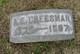 Profile photo:  A E Cheesman