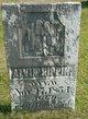 Profile photo:  Alvin Pippin
