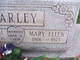 Profile photo:    Mary Barley
