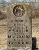 Susan S. Anderson