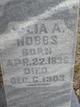 Julia Ann <I>Cornelius</I> Hobbs