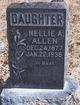 Nellie A Allen