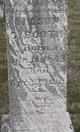 Wilson C. Booth