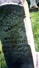 Mary E. <I>Davis</I> Trisler