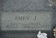 Amey J. <I>Jackson</I> Birge