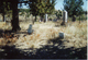 Mitchell Cemetery Upper